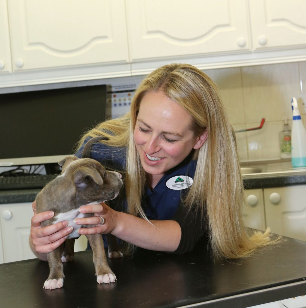 Nurse cuddling puppy over a counter