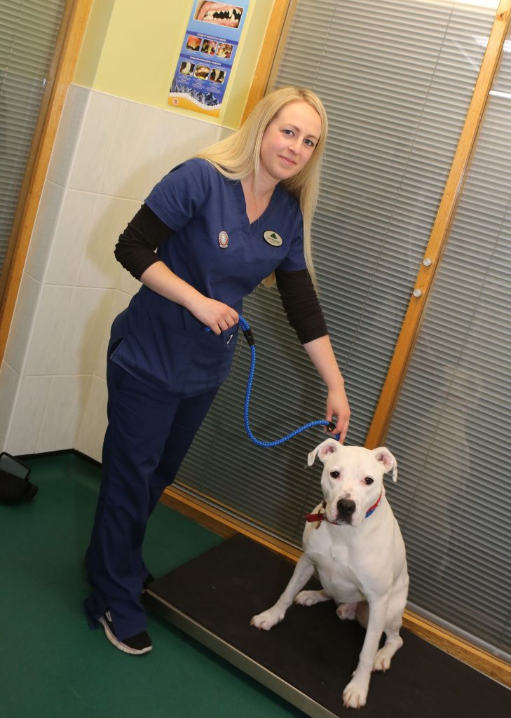 Nurse walking with a dog on it's lead