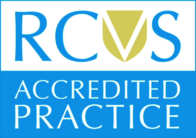RCVS blue and white logo