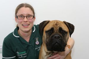Ashlands Registered Veterinary Nurse with Big Dog