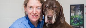 Melanie Broad Director of Border Vets with old dog in vet surgery