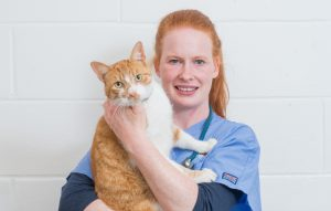 Veterinarian Victoria holding a cat in Border vets